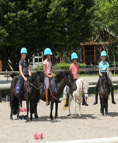 Groupe d'enfants sur des poneys