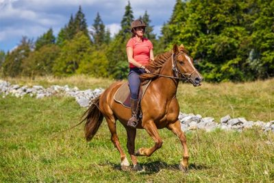 Balade à cheval - Galot