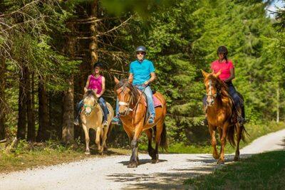 Balades collectives à cheval